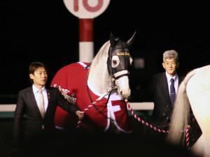 2015年有馬記念・ゴールドシップ引退式